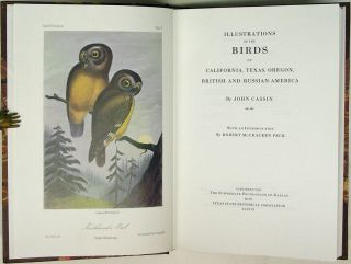 Illustrations of the Birds of California, Texas, Oregon, British and Russian America. John Cassin